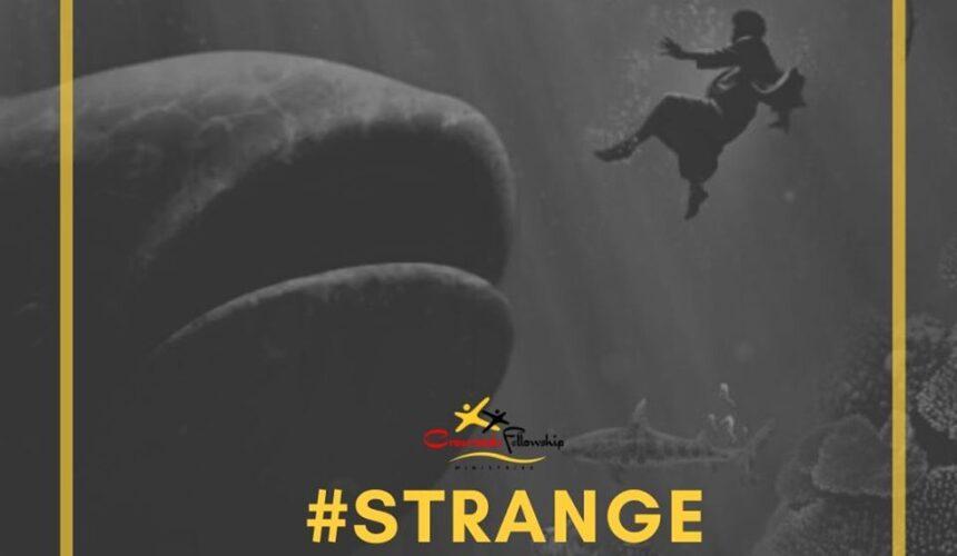 Strange Mercy — Jonah 1