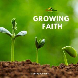 Growing faith
