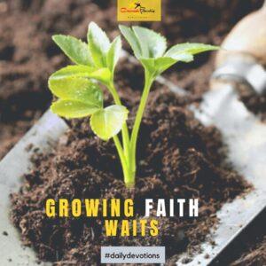 Growing faith waits