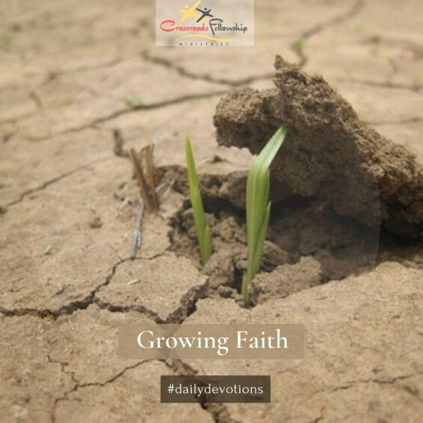Growing faith, Part 3