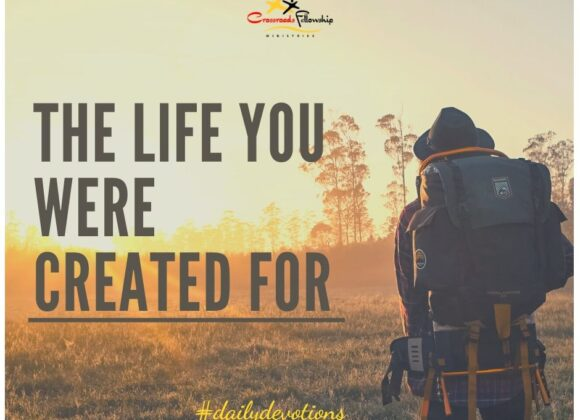 The life you were created to live